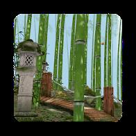 Bamboo Forest 3D Wallpaper