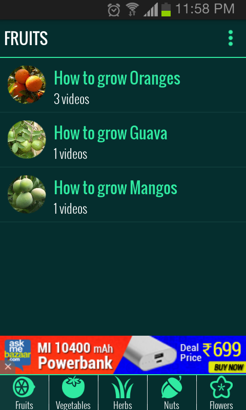 Roof Garden (Grow Vegetables)- screenshot