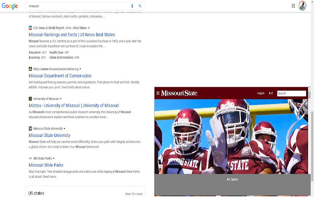 Google Search Previewer
