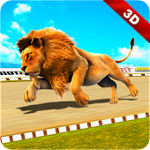 Wild Lion Racing Fever : Animal Race