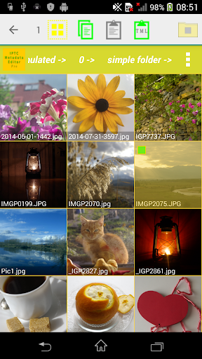IPTC Photo Metadata Editor Pro cheat hacks