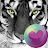 Big Cats HD Wallpapers logo