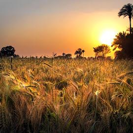 P23 by Abdul Rehman - Landscapes Sunsets & Sunrises (  )