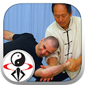 Tai Chi Martial Applications icon