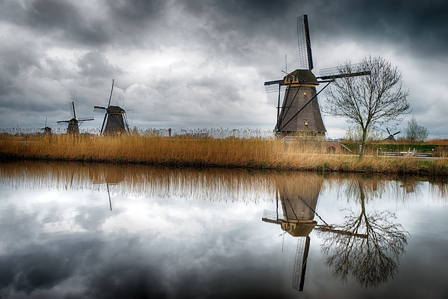 Windmills by Giovanni  Volpe  - Buildings & Architecture Public & Historical ( clouds, mill, reflection, holland, reflections, cloudscapes, cloudscape, windmillm, windmills )