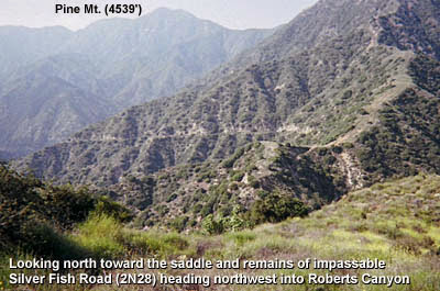 Photo: View north toward the saddle and the upper reaches of Roberts Canyon