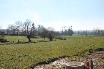 terrain à La Châtaigneraie (85)