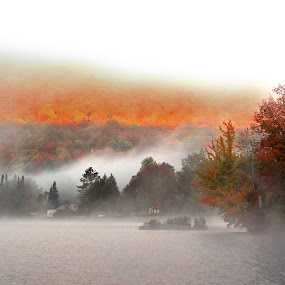 Autumn Mist  Sunrise by Dorothy Koval - Landscapes Weather ( shore, orange, lake, glow, red, fog, autumn, foliage, fall, trees, vermont, sunrise, mist )