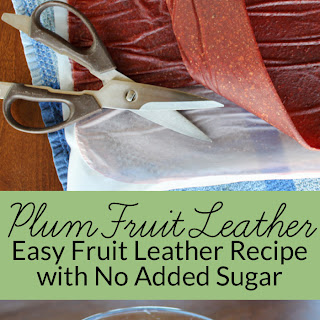 Wild Plum Fruit Leather Using No Refined Sugar