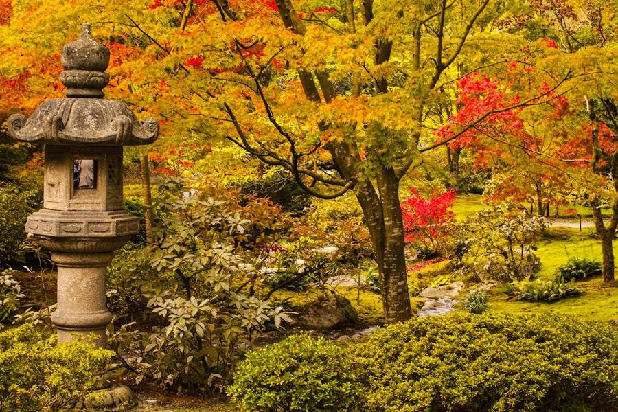 pagoda in the Japanese Garden park by Gary Parker - City,  Street & Park  City Parks (  )