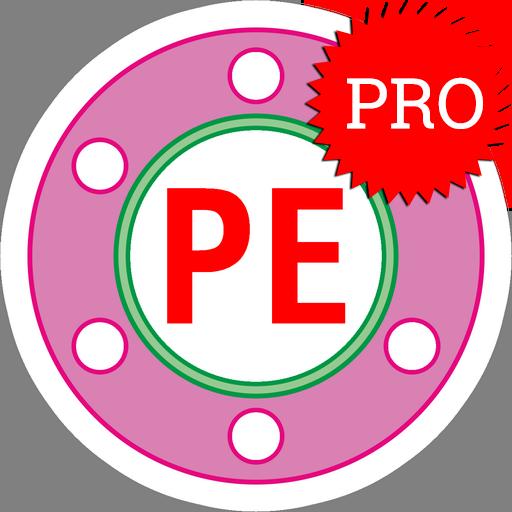 Piping Engineering Pro