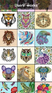 Animal Coloring Book 3