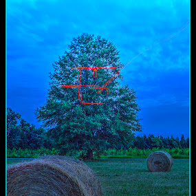 Sign of the Times by Elk Baiter - Landscapes Prairies, Meadows & Fields ( hay, field, tree, drone, sundown,  )
