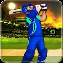 Cricket Game 2017 3D Championship Tournaments 1.0  APK