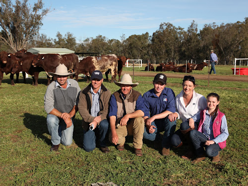 Stuart Brownlie (buyer) and Craig Price (Livestock Manager at Kilcoy Pastoral Company), with John, Nick, Liz and Sophia Manchee.