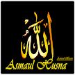 Asmaul Husna APK