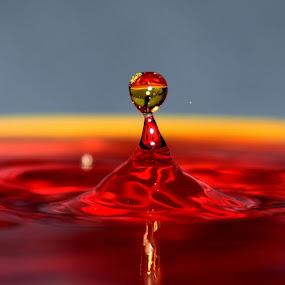 Waterdrop by Tahir Sultan - Abstract Water Drops & Splashes ( #water, #nikon, #waterdrop, #macro, #splash, #nikonpakistan )