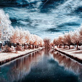 Unreality by Thilo Bayer - Landscapes Waterscapes ( infrared, holland )