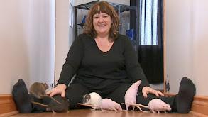 Raggedy Ann & A Rat's Tale thumbnail
