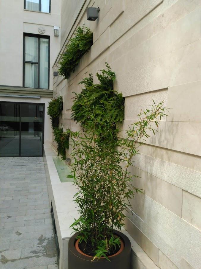 jardín vertical Granada