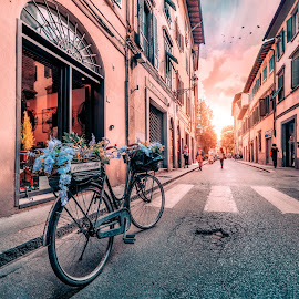 Florence corner by Goran Dzh - City,  Street & Park  Neighborhoods ( nikon, sunlight, italia, bicycle, town, street, sunset, renaissance, tamron, colorful, italy, bike )