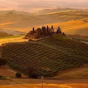 Val d'Orcia by Arda Erlik - Landscapes Sunsets & Sunrises ( tuscany, landscape, belvedere, italy )