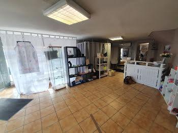 locaux professionels à Saint-Sylvestre-sur-Lot (47)