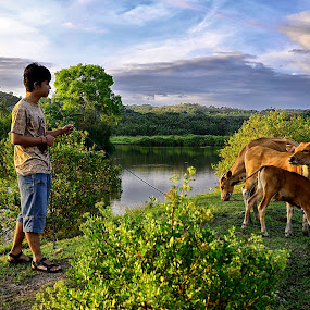 raise cattle by Hendra Edi Saputra - People Street & Candids