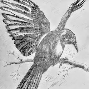 by Satyabrata Paul - Drawing All Drawing