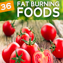 Fat Burning Foods icon