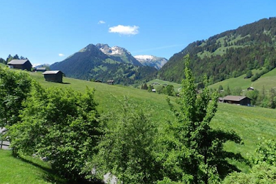 Sun Drenched Lawn and Chalet in Gstaad