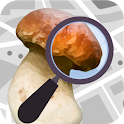 Mushroom Identify - Automatic picture recognition icon