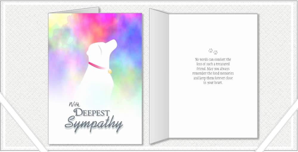 colorful dog sympathy for labrador dog or golden retriever dog