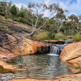 The Gorge Swimming Hole by Susan Marshall - Landscapes Waterscapes ( water, gorge, waterfall, bush, state forest, swimming,  )