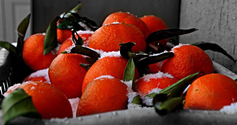 Mandarini di Elisabetta Di Franco