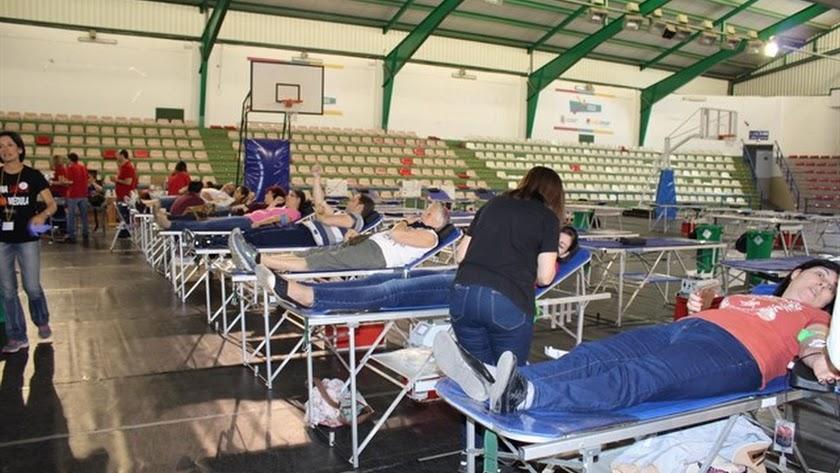 Comunicación directa por WhatsApp con los donantes de plasma
