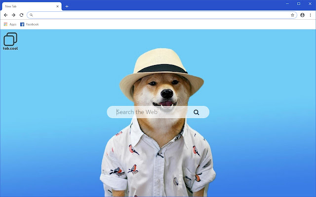 Cool Doge HD Wallpapers New Tab Meme Theme