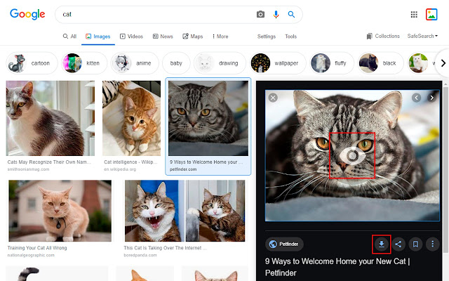 Google Images - instant download & preview