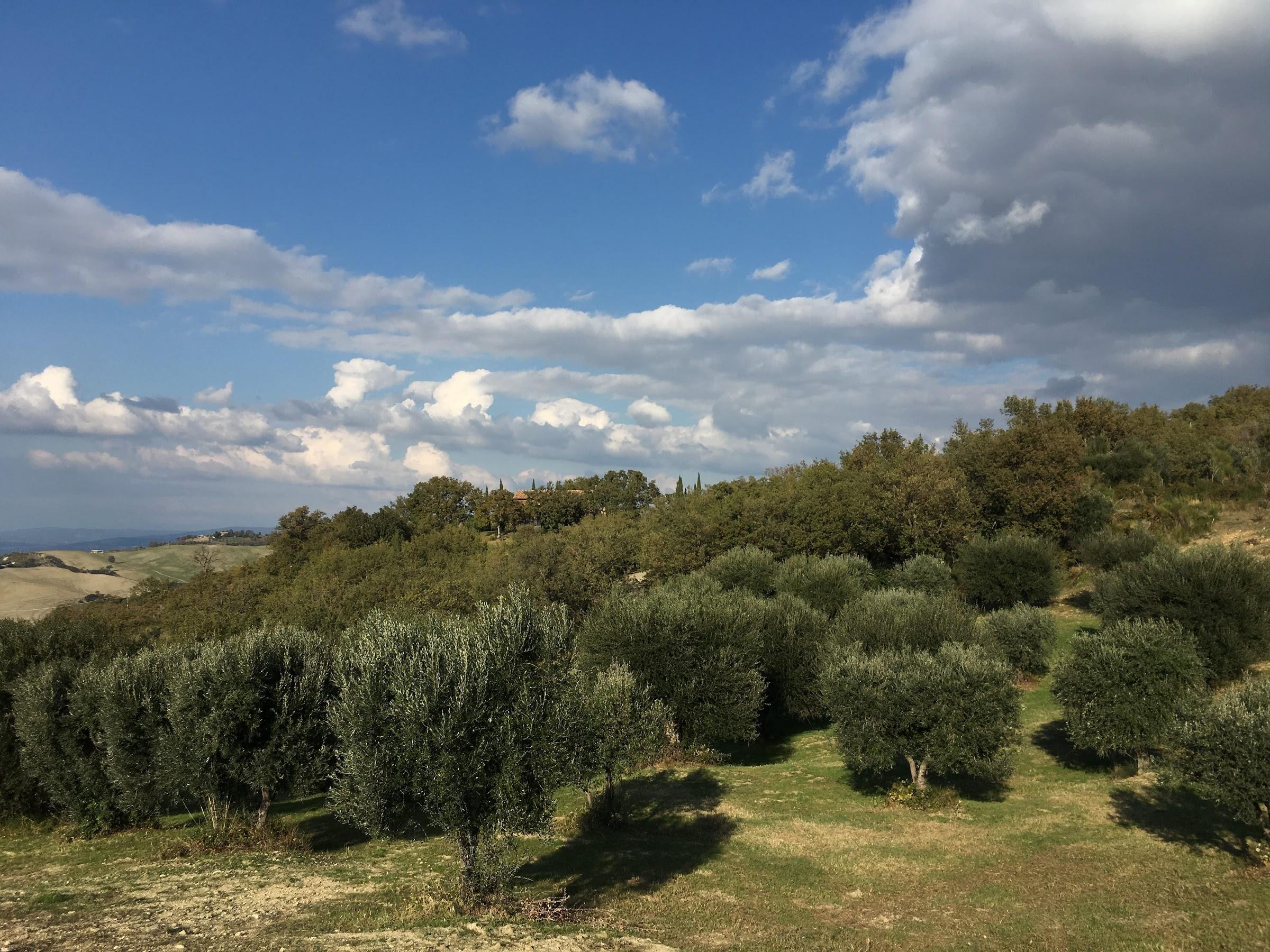Podere Santa Pia, en landhuis in d Toscaanse Maremma