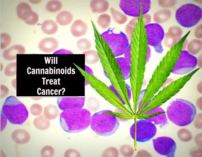 Cannabinoids For Cancer Treatment, Journal Supports Changing Federal Schedule