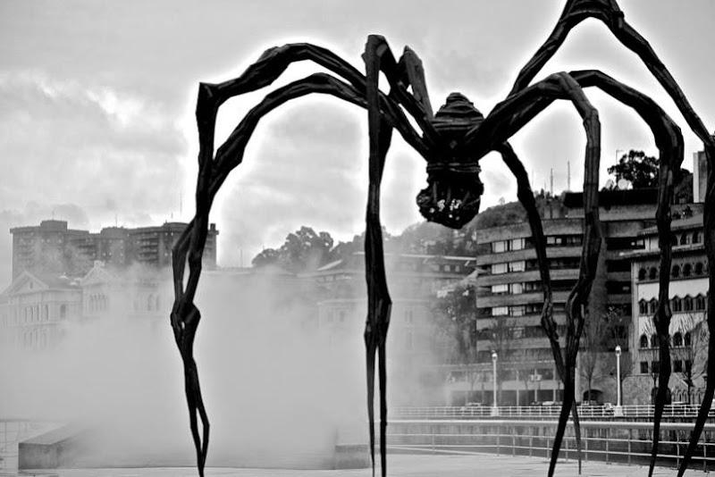 Il ragno e la nebbia di leonardo.martines.1213