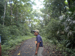 Photo: tourguide taking us into the rainforest