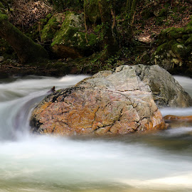 The rock in the river by Gil Reis - Nature Up Close Rock & Stone ( life, waters, bio, nature, places, portugal, rivers )