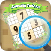 Amazing Sudoku Challenge
