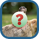 Download ANIMALS QUIZ 2018 For PC Windows and Mac