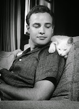 Photo: A later star, Marlon Brando, gets the 'pet treatment,' this time with a cat.  Several such photos exist, all seemingly from the same session.  One hypothesis would be: the animal helps define the star's masculinity in terms of gentleness, rather than force.