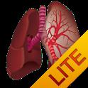 Ausculta Pulmonar Lite icon