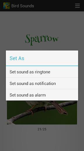 Bird Sounds screenshot 6
