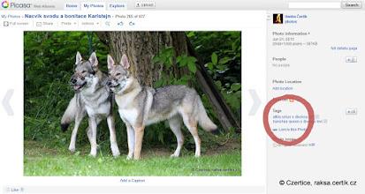 Photo: Popisky fotek jsou po straně - jména psů, snad jsem je trefila správně.