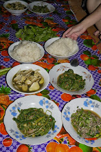 Photo: Local dinner compliments from our wonderful host. Sticky rice accompanied by bamboo shoots, stir-fried ferns and fish laap (minced fish with lotsa mint)